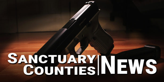 Sanctuary County News