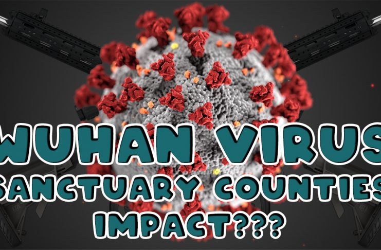 Wuhan Virus Sanctuary Counties Impact