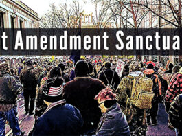 Picture showing a Pro Second Amendment Rally - Text reads: !st Amendment Sanctuary