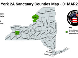 New York Second Amendment Sanctuary State Map